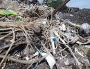 Ngổn ngang rác thải y tế trong bãi rác dân sinh