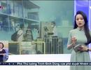 Vấn đề lao động nhập cư trong kiểm soát dịch Covid-19 ở Singapore, Malaysia