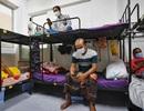 Lao động nhập cư - Ổ dịch Covid-19 tại Singapore