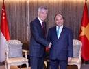 Thủ tướng Singapore cảm ơn Việt Nam tặng khẩu trang, bộ xét nghiệm