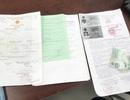 Bình Dương: Phát hiện 213 trường hợp mượn tên người khác làm hồ sơ BHXH