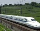 Bộ Giao thông chịu trách nhiệm trình Bộ Chính trị về đường sắt tốc độ cao