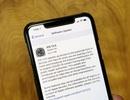 Bản vá iOS 13.5.1 khắc phục lỗ hổng bảo mật nghiêm trọng