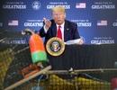 Ông Trump dọa đánh thuế hàng hóa EU, Trung Quốc vì tôm hùm