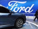 Mỹ: Ford vẫn chưa cho nhân viên văn phòng trở lại làm việc