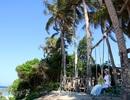 Quảng Ngãi: Độc đáo mô hình du lịch homestay ở Lý Sơn