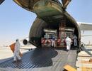 Mô hình kinh doanh hàng không mới nổi: Vận chuyển lợn giống đến Trung Quốc
