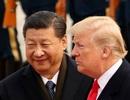 Tổng thống Trump bác tin nhờ ông Tập Cận Bình giúp tái đắc cử