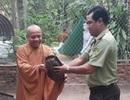 Khuyến cáo không phóng sinh, nuôi, nhốt động vật hoang dã tại đền, chùa