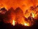 Cận cảnh biển lửa đỏ rực trong đám cháy rừng kinh hoàng ở Nghệ An, Hà Tĩnh