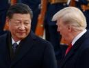 Hồi ký Bolton: Đích thân ông Tập đề nghị ông Trump bỏ cấm vận về Huawei