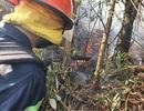 Đám cháy rừng bùng phát trở lại sau hơn 10 giờ bị khống chế