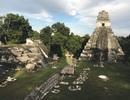 Thành phố của người Maya bị bỏ rơi bí ẩn