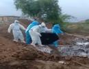 Tranh cãi video thi thể nạn nhân Covid-19 bị vứt xuống hố