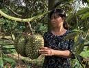 Người phụ nữ làm kinh tế giỏi hiến hơn 1.500m2 đất làm đường