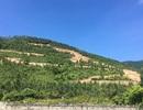 Hàng chục hộ dân thấp thỏm vì mỏ đá chuẩn bị vào khai thác tại Quảng Bình