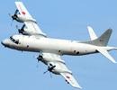 Nhật Bản cảm ơn Việt Nam hỗ trợ máy bay quân sự gặp sự cố
