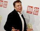 Ông chủ Tesla gây sốc vì rao bán... quần đùi
