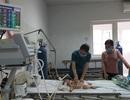 Tưởng sốt mọc răng, bé 9 tháng tuổi viêm não Nhật Bản