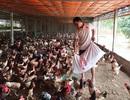 Đang nghèo nhất làng trở thành tỷ phú nhờ khởi nghiệp từ 20 con gà mái