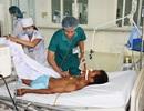 6 người nhập viện sau khi ăn cá nóc hấp sả