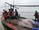 16 tiếng vật lộn với sóng dữ lai dắt tàu cá bị nạn