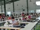 Nghệ An: Một công ty nợ bảo hiểm bị khởi kiện ra tòa án