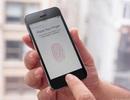 """Khóa vân tay trên iPhone 5S bị tin tặc """"qua mặt"""" sau 1 ngày"""