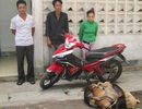 Hai vợ chồng trộm chó trong đêm