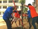 Hơn 17.000 cây xanh được trồng trong Ngày chủ nhật Xanh - Sạch - Đẹp