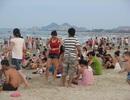 Khách sạn ven biển ăn nên làm ra nhờ nắng nóng