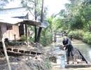 Tranh thủ mùa nước nổi, nông dân bán đất mặt ruộng kiếm tiền triệu