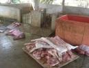 Bắt quả tang cơ sở giết mổ lợn chết