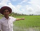 Lão nông người Khmer trở thành tỷ phú nhờ cây lúa