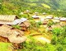 Quảng Nam cấp trên 21 tỉ đồng hỗ trợ hộ nghèo đón Tết