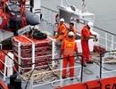 Tàu câu mực bị đâm chìm ở Hoàng Sa, 34 ngư dân nhảy xuống biển