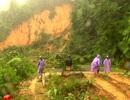 Huyện vùng cao Nam Trà My bị cô lập do mưa lũ