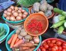Sau mưa lũ, hơn trăm ngàn cân ớt vẫn không có mà bán