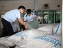 Bắt giữ lô hàng lậu giá trị lớn gần cửa khẩu Lao Bảo