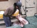 Quảng Trị: Bắt giữ 1 tấn nội tạng động vật đã có dấu hiệu bốc mùi hôi