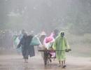 Diễn tập tìm kiếm cứu nạn, sơ tán dân trong trận bão lớn