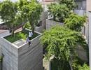 4 công trình Việt Nam vào chung kết các công trình kiến trúc của năm