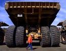 Tập đoàn than tư nhân lớn nhất thế giới tuyên bố phá sản