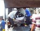Ngư dân lao đao vì tư thương ép giá cá ngừ