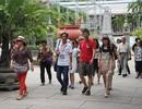 """Nha Trang: Khách Trung Quốc sai phạm, """"xử"""" doanh nghiệp lữ hành"""