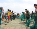 Hàng chục chiến sĩ giúp dân kéo lưới giải cứu tàu cá mắc cạn