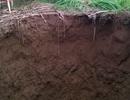 Hố sâu hàng chục mét xuất hiện bên bờ sông Bưởi