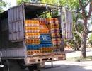 Thanh Hóa: Bắt xe tải chở gần 3 tấn gà không rõ nguồn gốc