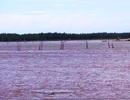 Xác định danh tính thi thể trôi trên vùng biển Thanh Hóa