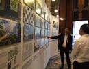 """KTS. Võ Trọng Nghĩa: """"Ngập lụt ở TP HCM sẽ giảm bớt nếu xanh hóa đô thị"""""""